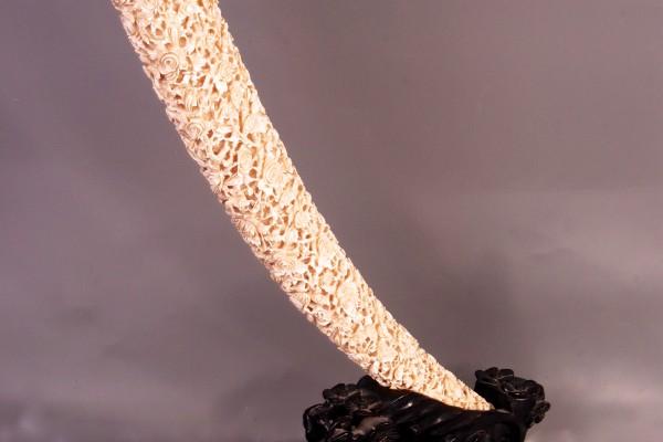 Défense en ivoire sculpté CHINE Dynastie Qing