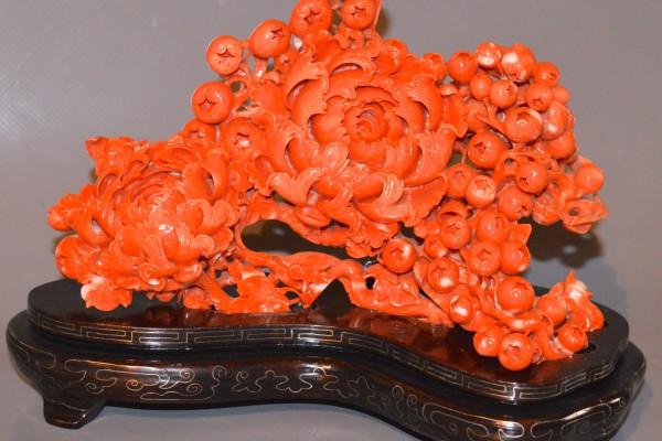 Chrysanthème en corail rouge    Chine XX° siècle